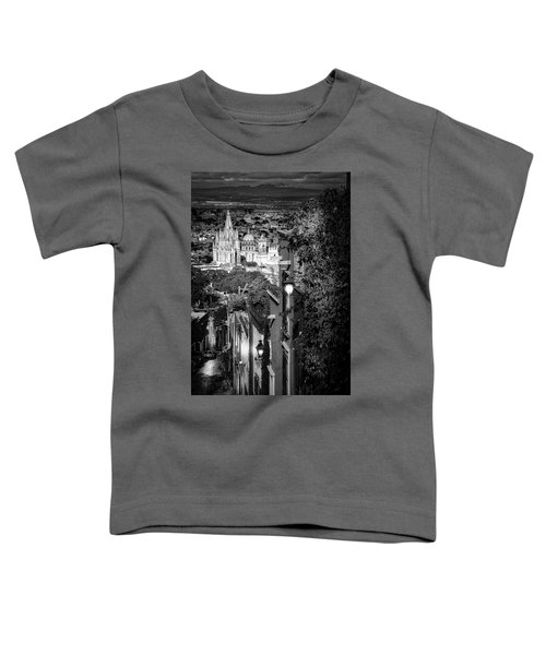 View From The Hill Toddler T-Shirt