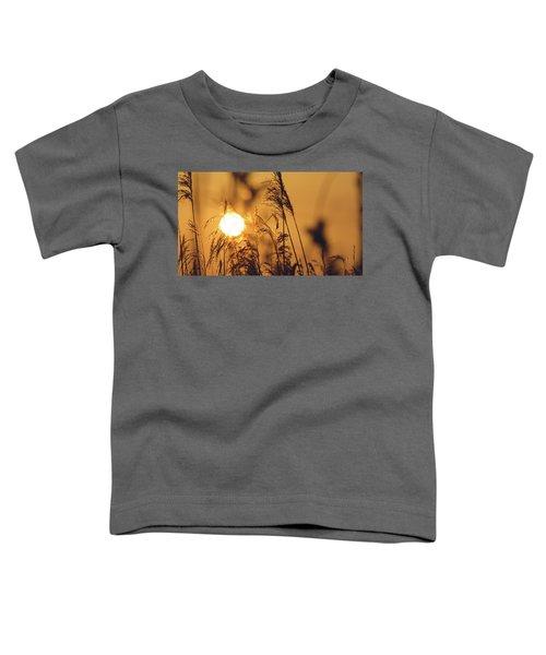 View Of Sun Setting Behind Long Grass C Toddler T-Shirt