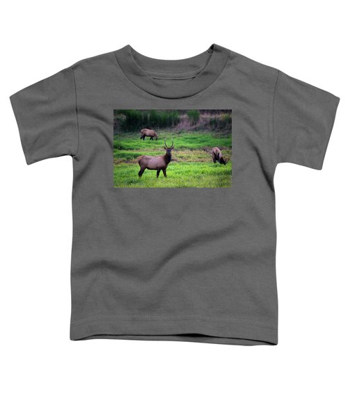Vigilant Toddler T-Shirt