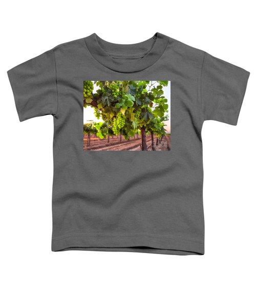 Vineyard 3 Toddler T-Shirt