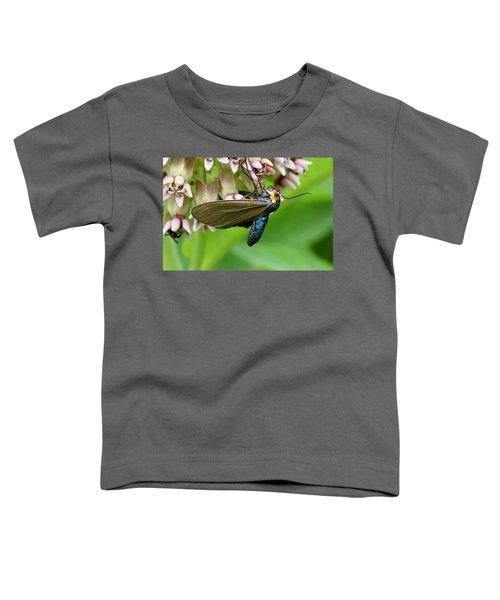 Virginia Ctenucha Moth Toddler T-Shirt