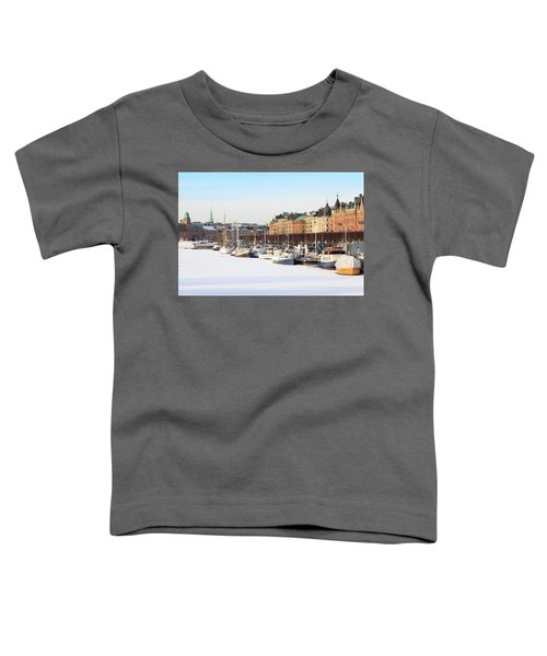 Waiting Out Winter Toddler T-Shirt by David Chandler