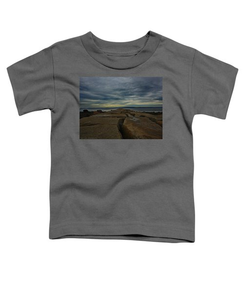 Walk To The Sea Toddler T-Shirt