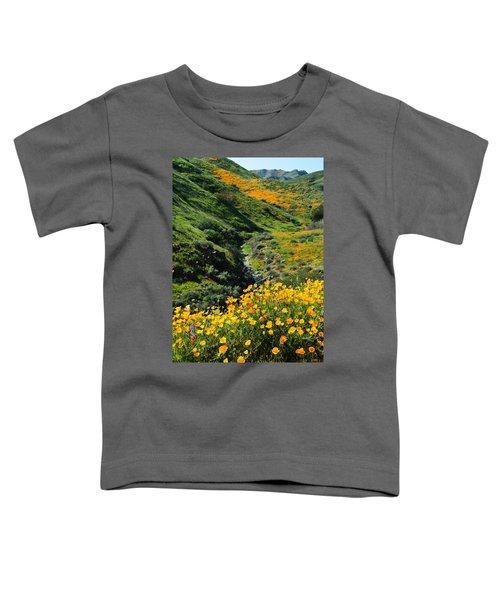 Walker Canyon Vista Toddler T-Shirt
