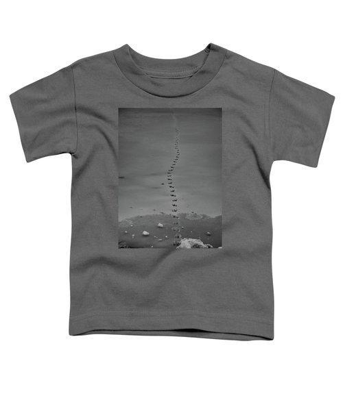 Walking On Thin Ice Toddler T-Shirt
