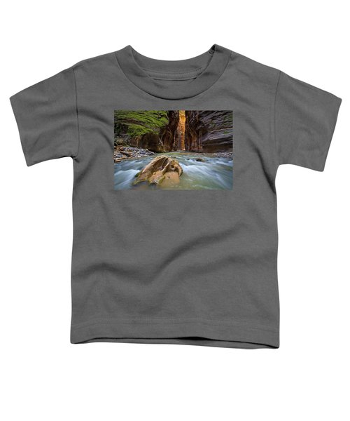 Wall Street Of The Narrows Toddler T-Shirt