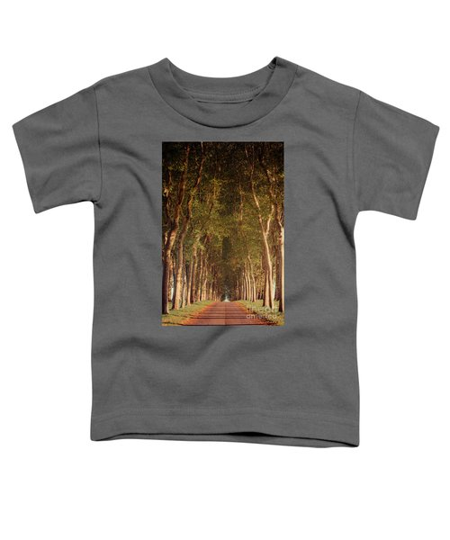 Warm French Tree Lined Country Lane Toddler T-Shirt