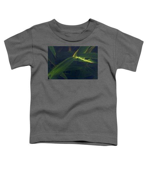 Water Catcher Toddler T-Shirt