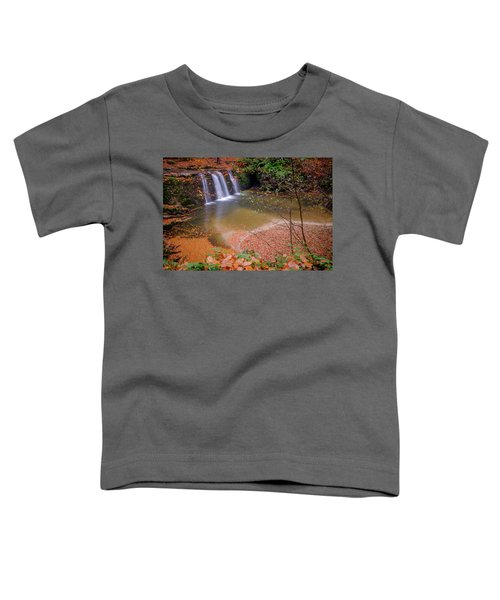 Waterfall-1 Toddler T-Shirt
