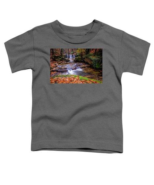 Waterfall-2 Toddler T-Shirt