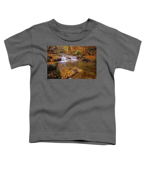 Waterfall-6 Toddler T-Shirt