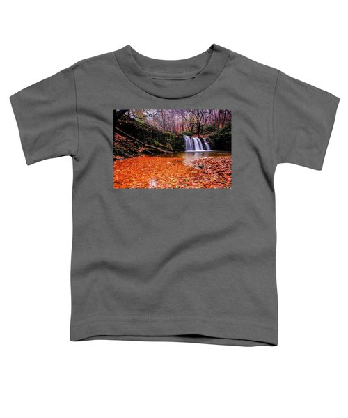 Waterfall-7 Toddler T-Shirt