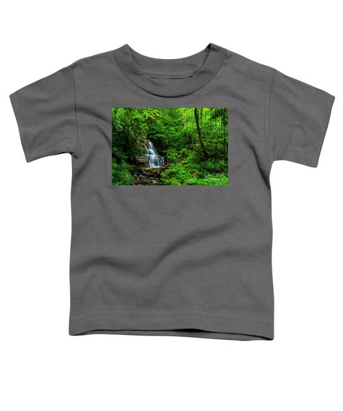 Waterfall And Rhododendron In Bloom Toddler T-Shirt