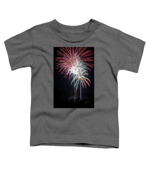 Waukesha Fireworks 01 Toddler T-Shirt