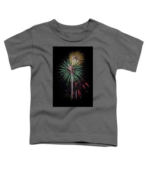 Waukesha Fireworks 02 Toddler T-Shirt
