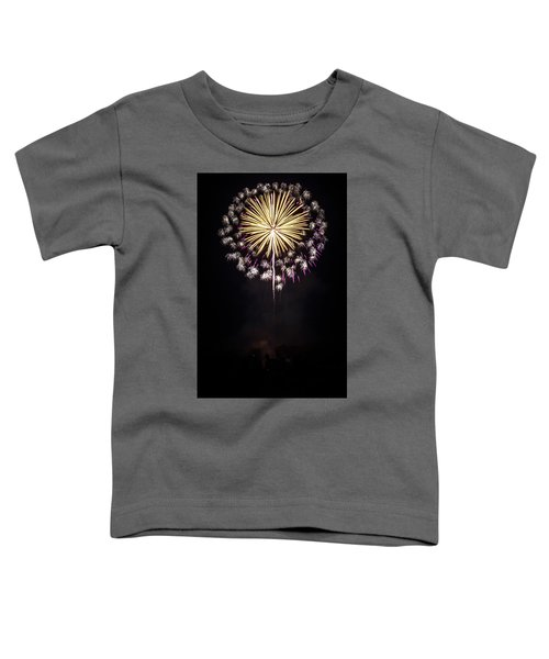 Waukesha Fireworks 03 Toddler T-Shirt