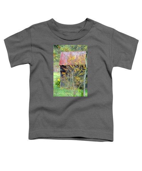 Weathered Barn 2 Toddler T-Shirt