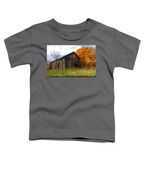 Weathered Barn 3 Toddler T-Shirt