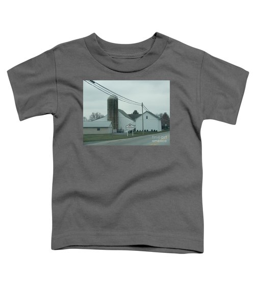 Welcome To Intercourse, Pa Toddler T-Shirt