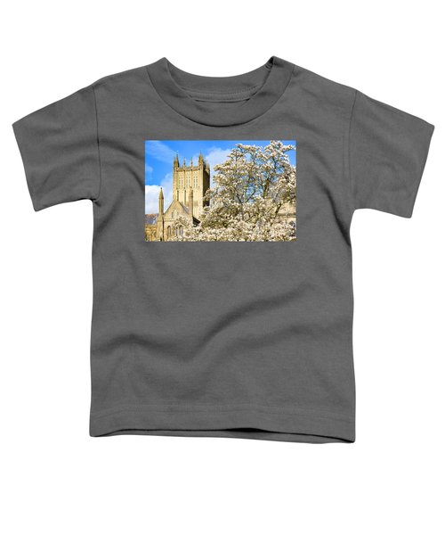 Wells Cathedral And Spring Blossom Toddler T-Shirt