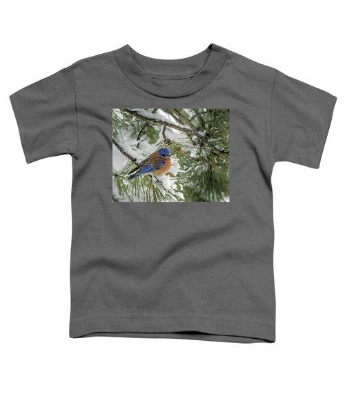 Western Bluebird In A Snowy Pine Toddler T-Shirt