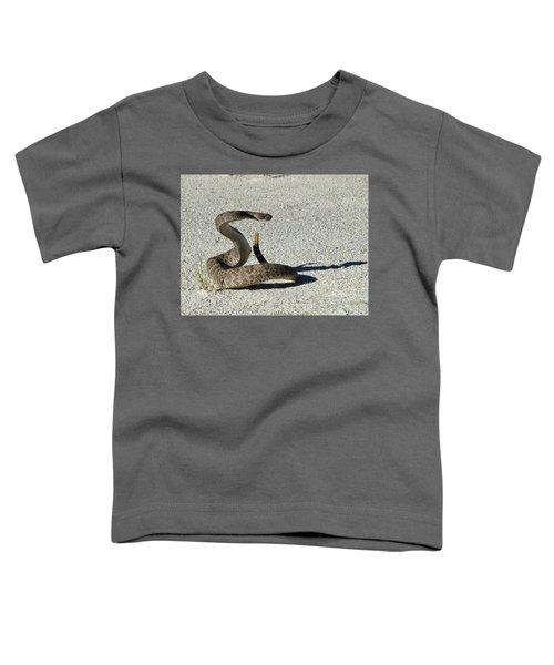 Western Diamondback Rattlesnake Toddler T-Shirt by Skeeze