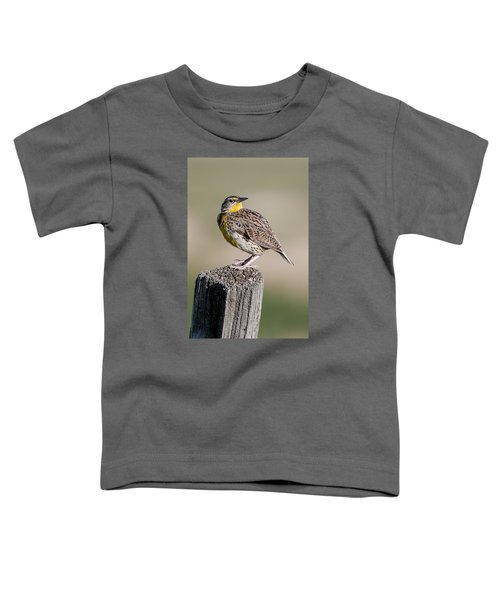 Toddler T-Shirt featuring the photograph Western Meadowlark by Gary Lengyel