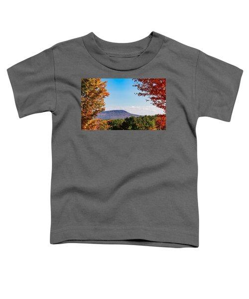 Westhampton View Of Mount Tom Toddler T-Shirt
