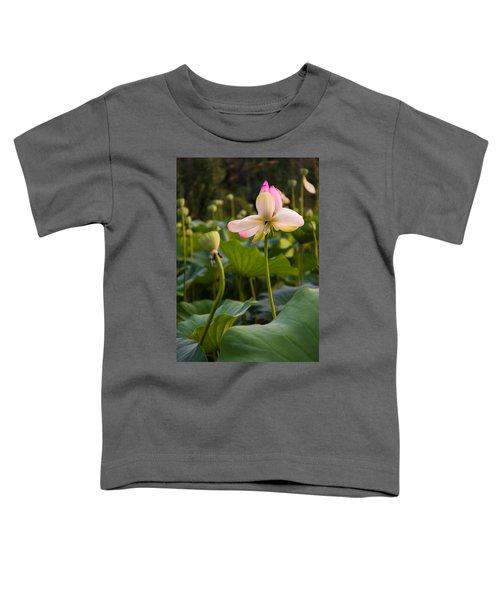 Wetland Flowers Toddler T-Shirt