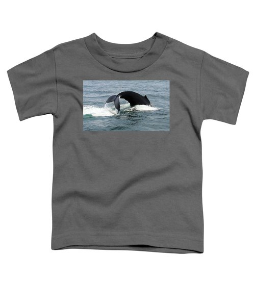 Whale Of A Tail Toddler T-Shirt