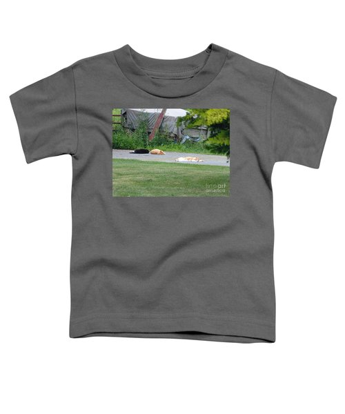 What A Day Toddler T-Shirt
