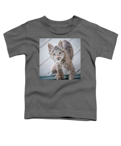 What Are You Toddler T-Shirt
