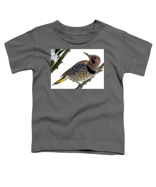 What Was That - Northern Flicker Toddler T-Shirt