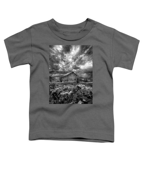 Where Ghosts Of Old Dwell And Hold Toddler T-Shirt