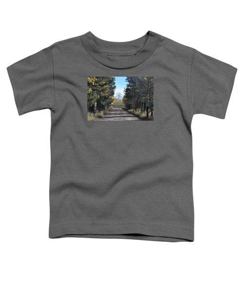Cr 511 Divide Co Toddler T-Shirt