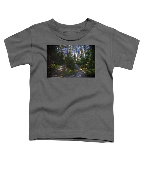 Which Path? Toddler T-Shirt