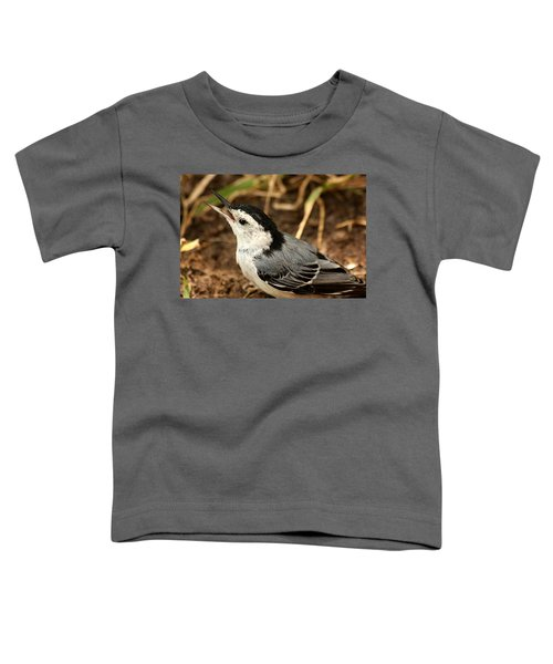 White Breasted Nuthatch 2 Toddler T-Shirt