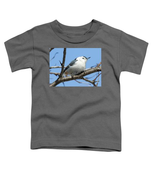 White-breasted Nuthatch Perched Toddler T-Shirt