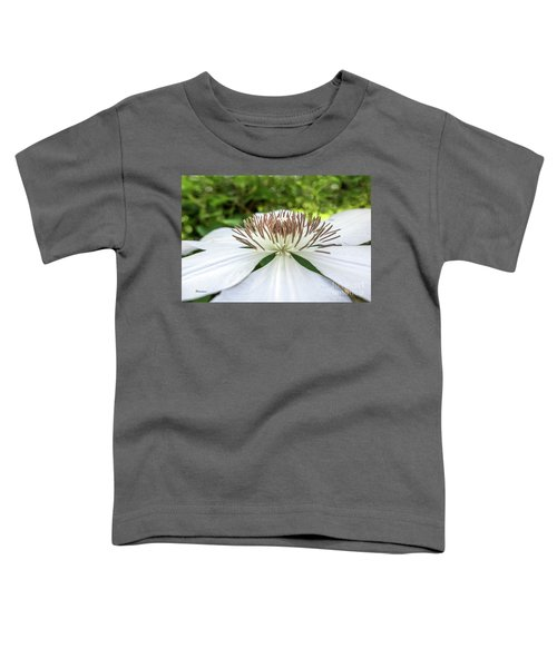 White Clematis Flower Garden 50146 Toddler T-Shirt