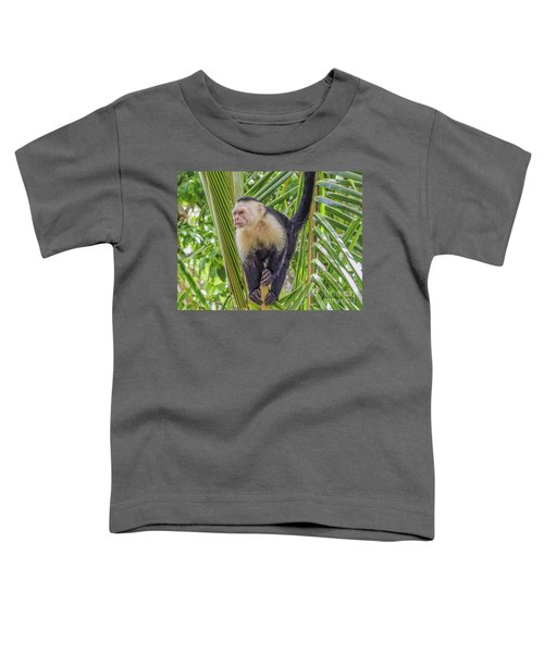 White Faced Monkey In A Tree Toddler T-Shirt