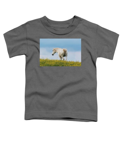 White Horse Of Cataloochee Ranch - May 30 2017 Toddler T-Shirt