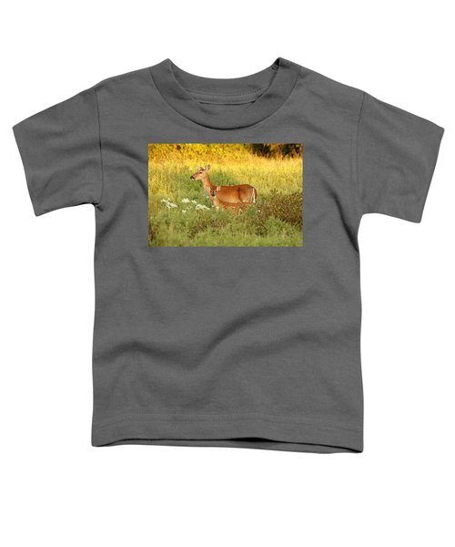 White-tail Doe And Fawn In Meadow Toddler T-Shirt