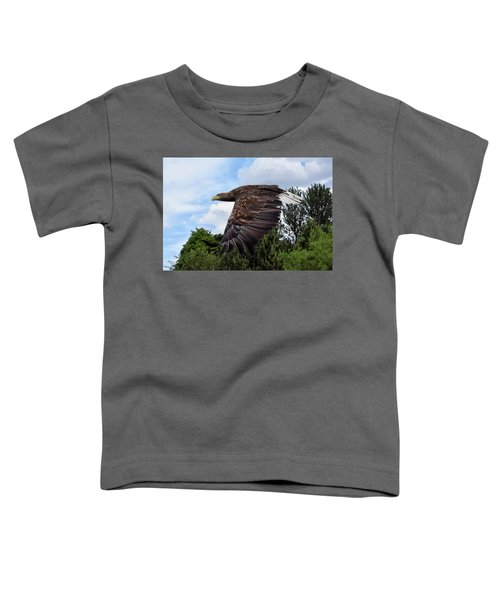 White Tailed Eagle Toddler T-Shirt