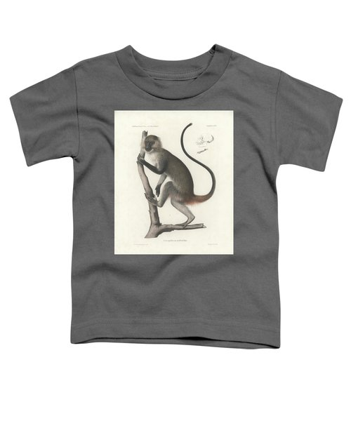 White Throated Guenon, Cercopithecus Albogularis Erythrarchus Toddler T-Shirt