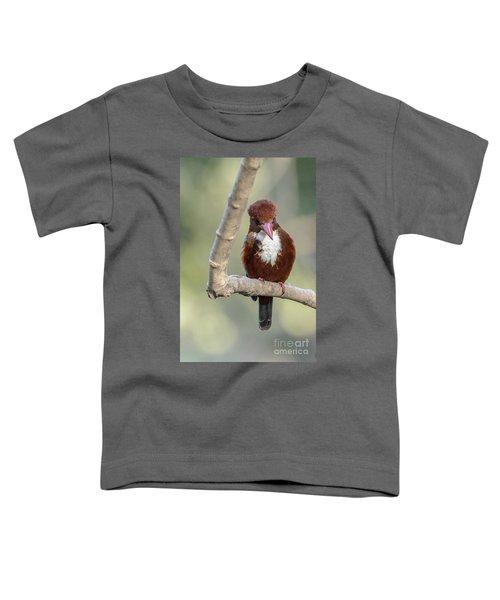 White-throated Kingfisher 01 Toddler T-Shirt