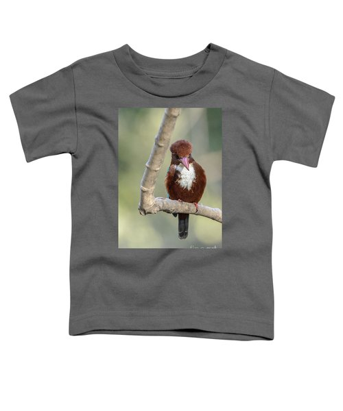 White-throated Kingfisher 01 Toddler T-Shirt