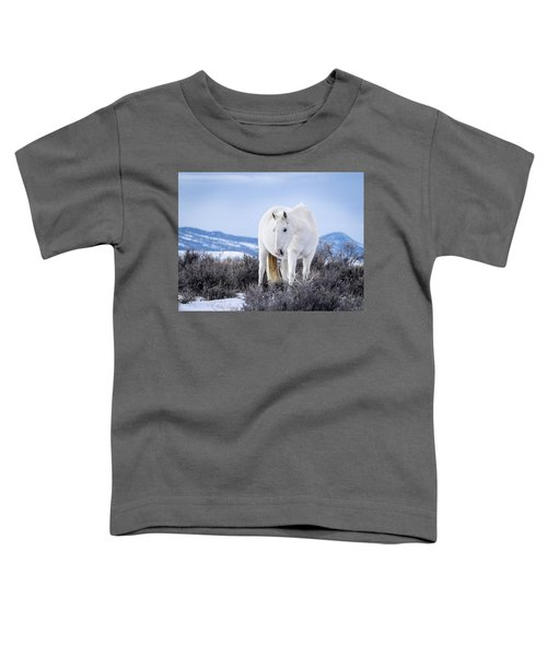 White Wild Horse Mystic Of Sand Wash Basin Toddler T-Shirt