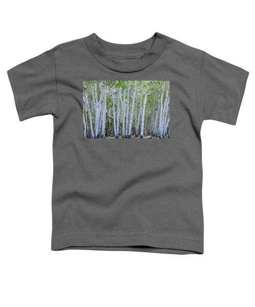 White Wilderness Toddler T-Shirt by James BO Insogna