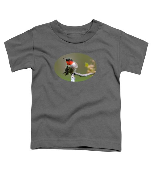 Wild Birds - Ruby-throated Hummingbird Toddler T-Shirt by Christina Rollo