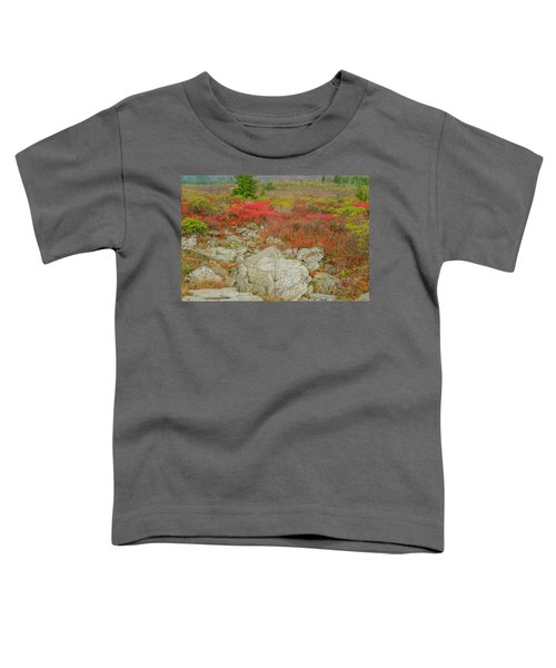 Wild Blueberries Toddler T-Shirt